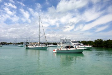No Name Harbor, Key Biscayne
