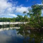 Anne Kolb Nature Center (Copyright Miamicito)